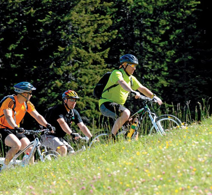 Châtel : destination 4 saisons entre Léman et Mont-Blanc