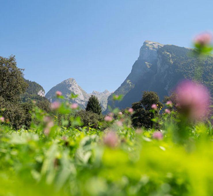 Samoëns : cultiver le bien vivre…